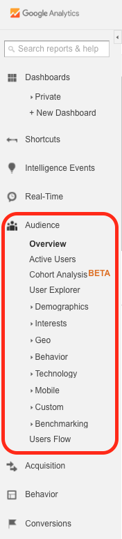 A user's left menu shows all the options under the Audience reports